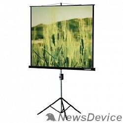 Экраны LUMIEN Lumien Master View LMV-100102 Экран на треноге 153x 153см настенно-потолочный рулонный черный