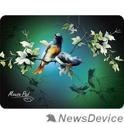 Коврики Dialog PM-H17 bird Коврик черный с цветными птицами, размер 285x215x3 мм