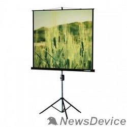 Экраны LUMIEN Lumien Master View LMV-100108 Экран на треноге (183х244), рабочая область (175х236) 4:3 напольный рулонный