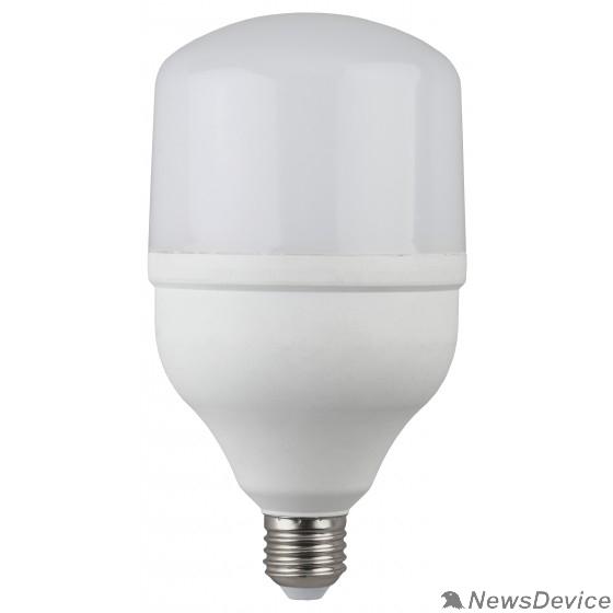 ЭРА Светодиодные лампы ЭРА Б0027000 Светодиодная лампа LED smd POWER 20W-2700-E27