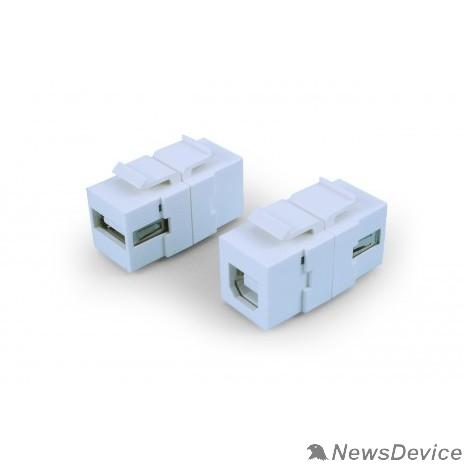 Монтажное оборудование Hyperline KJ1-USB-A-B2-WH Вставка формата Keystone Jack с проходным адаптером USB 2.0 (Type A-B), ROHS, белая
