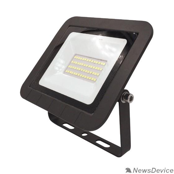 Прожекторы, светильники для уличного освещения ЭРА Б0043590 Прожектор светодиодный LPR-061-0-65K-030 30Вт 2800Лм 6500К 160x135x30