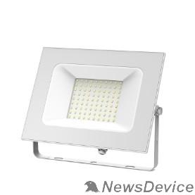 GAUSS Прожекторы светодиодные GAUSS 613120300 Прожектор светодиодный Gauss Elementary 100W 6600lm IP65 6500К белый