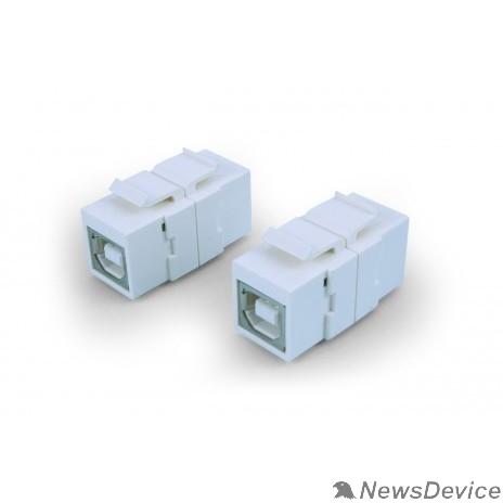 Монтажное оборудование Hyperline KJ1-USB-B2-WH Вставка формата Keystone Jack с проходным адаптером USB 2.0 (Type B), ROHS, белая