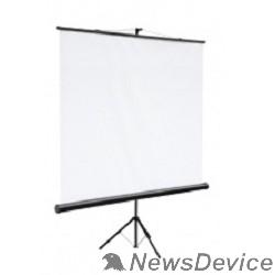 Экран Digis Kontur-C DSKC-1102 Экран на штативе,формат 1:1 180х180 MW